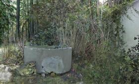 18.11.2007 Ausstellung – Diana Borchert